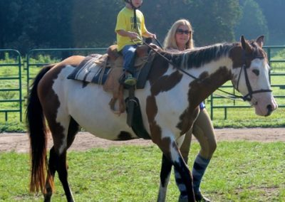 Chippy Horse Lessons