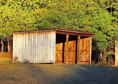 Run in sheds